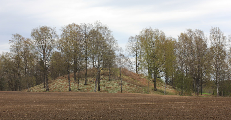 Photo of Rakni's mound, one of the largest barrows in Europe.