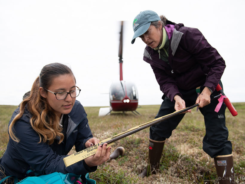 Two scientists measure soil in the Arctic