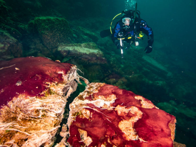 Longer Days Likely Boosted Earth's Early Oxygen - diver sinkhole