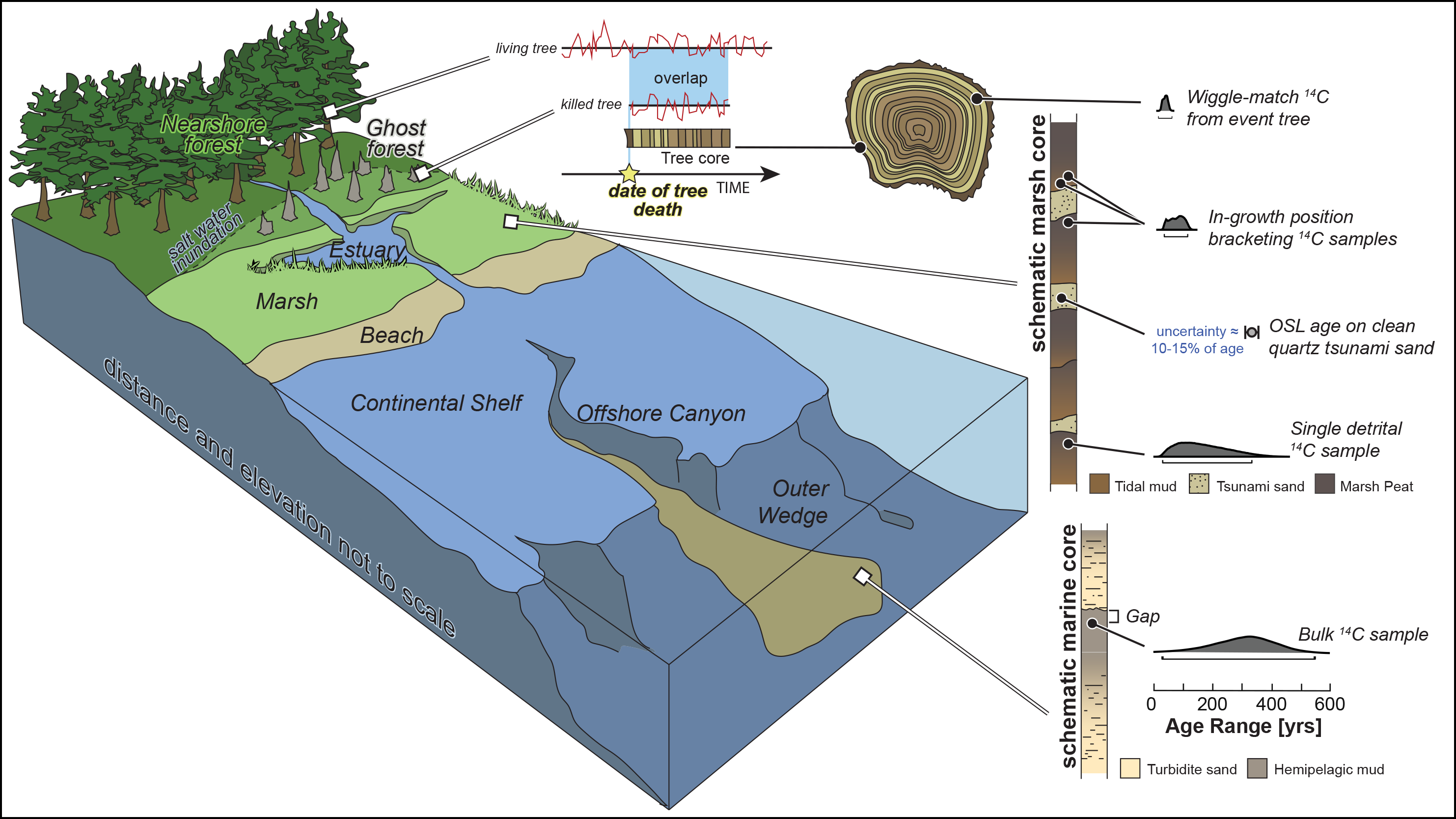 Illustration of geochronologic methods used to date past earthquakes as well as related coastal and offshore environments