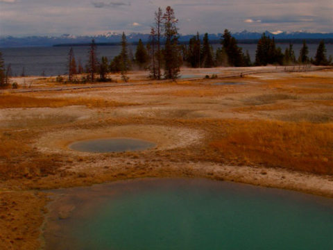 Turquoise thermal pools sit on the edge of Yellowstone Lake.